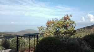 Coti Chiavari Corse